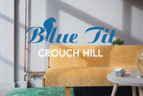 hairdressers in crouch hill - blue tit logo